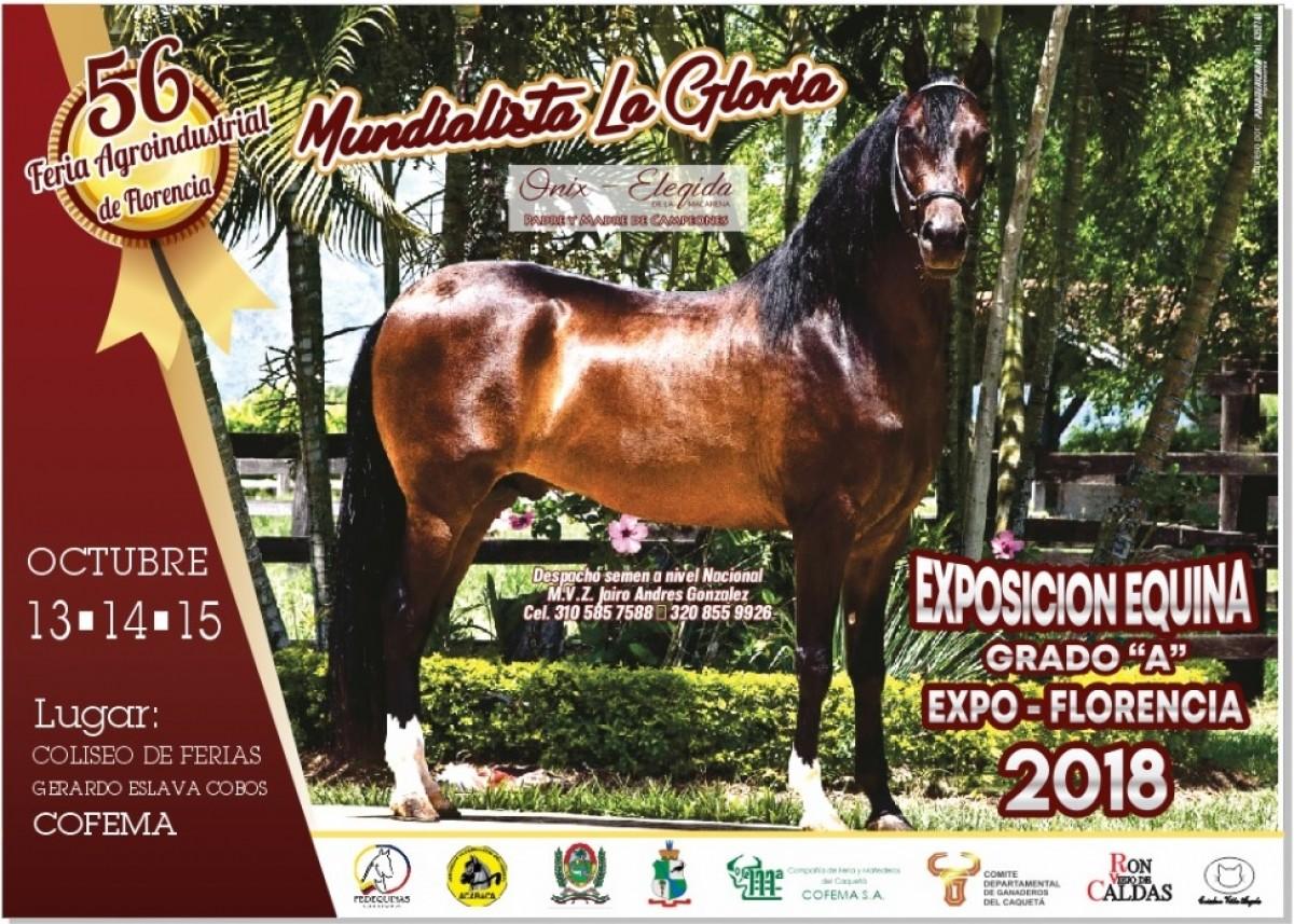 Expo Florencia Grado A Octubre 13 Al 15