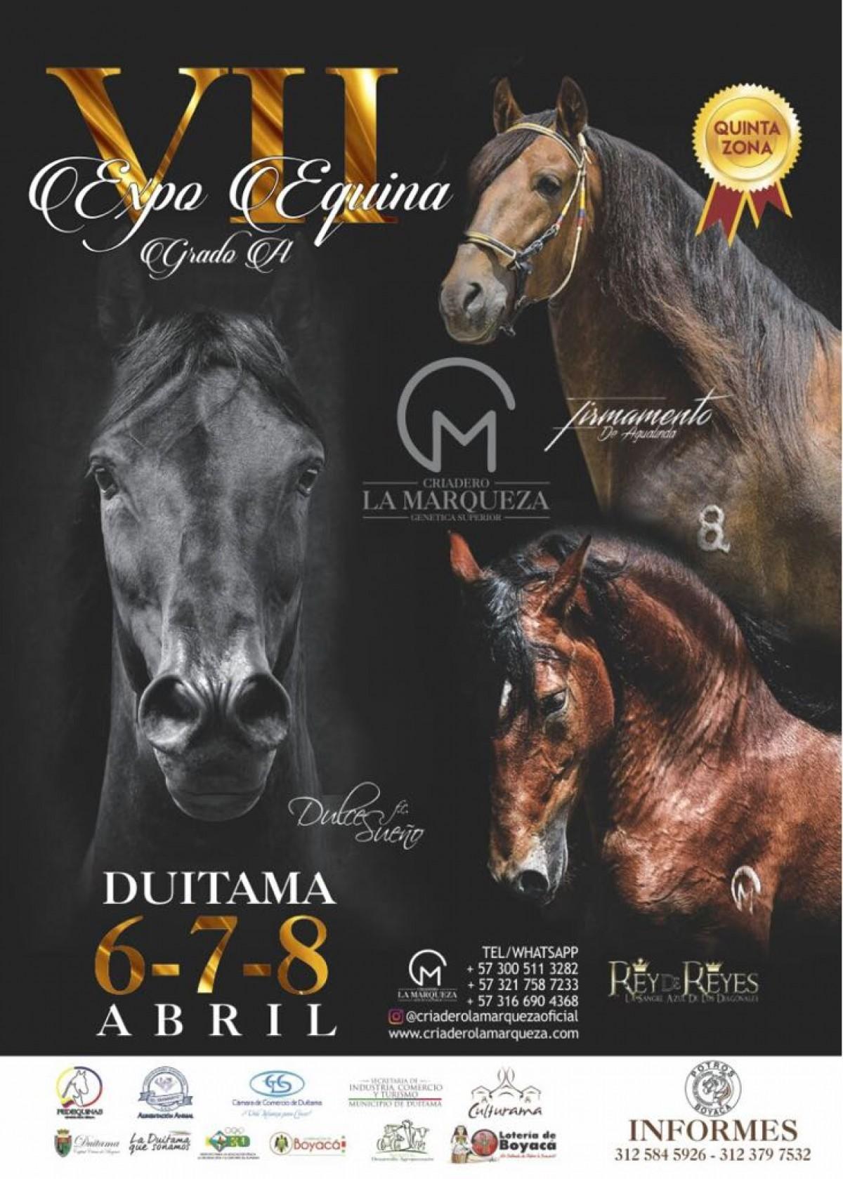 TRANSMISIÓN VII Expo Equina Grado A Duitama,Del 6 al 8 De Abril