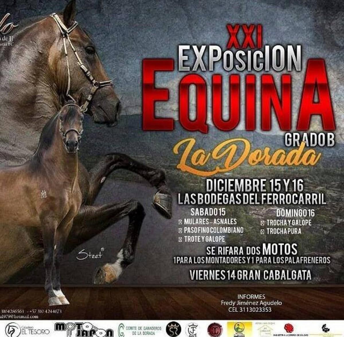 TRANSMISIÓN XXI Exposición Equina Grado B La Dorada, Diciembre 15 y 16