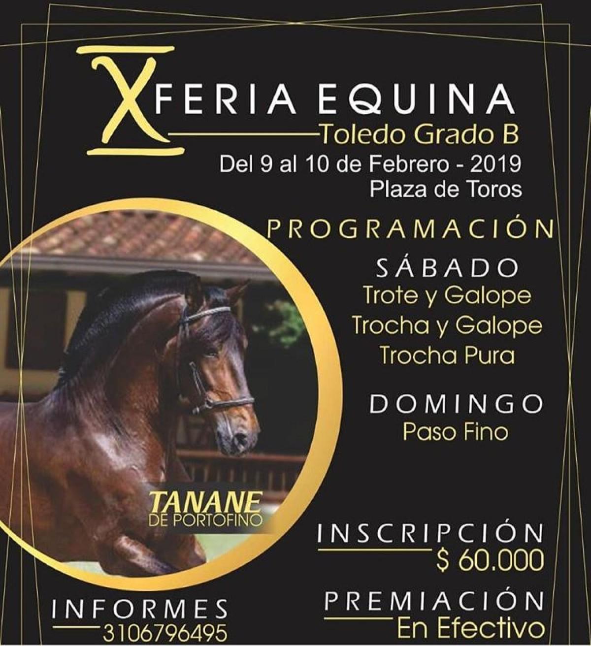 X Feria Equina Grado B Toledo, 9 y 10 de Febrero