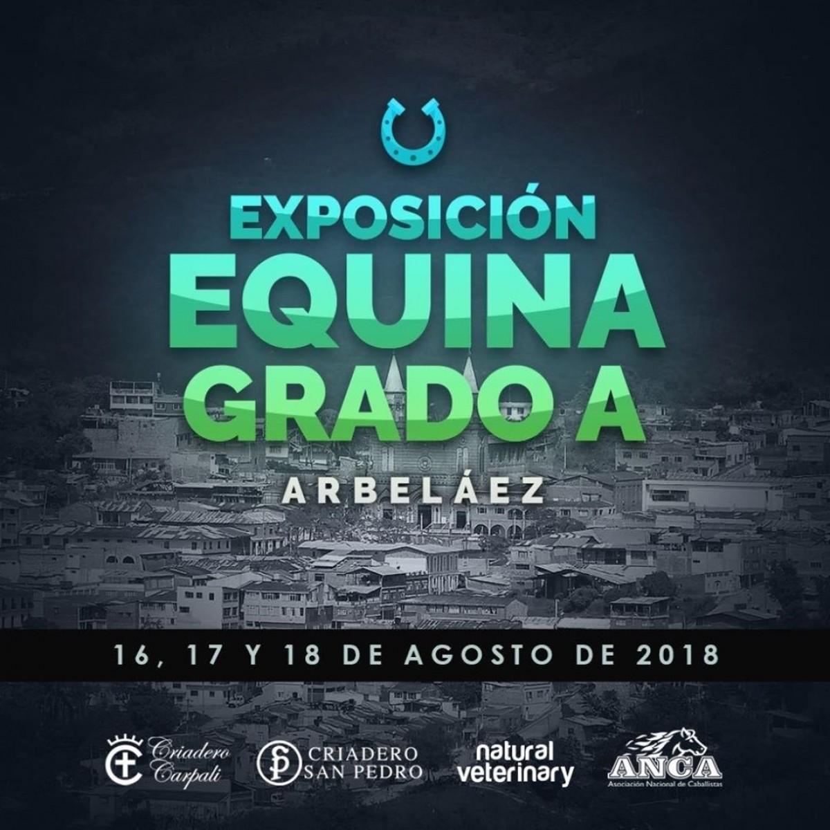 TRANSMISIÓN Exposición Equina Grado A Arbeláez Del 16 al 18 De Agosto