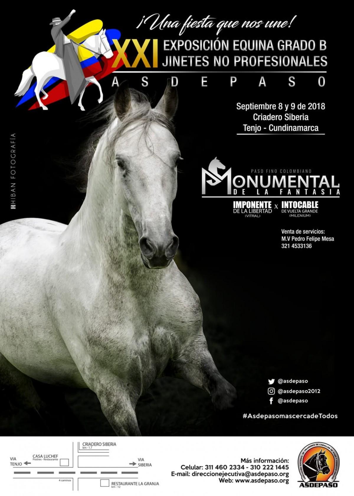 XXI Exposición Equina Grado B Jinetes No Profesionales Asdepaso, 8 y 9 De Sept