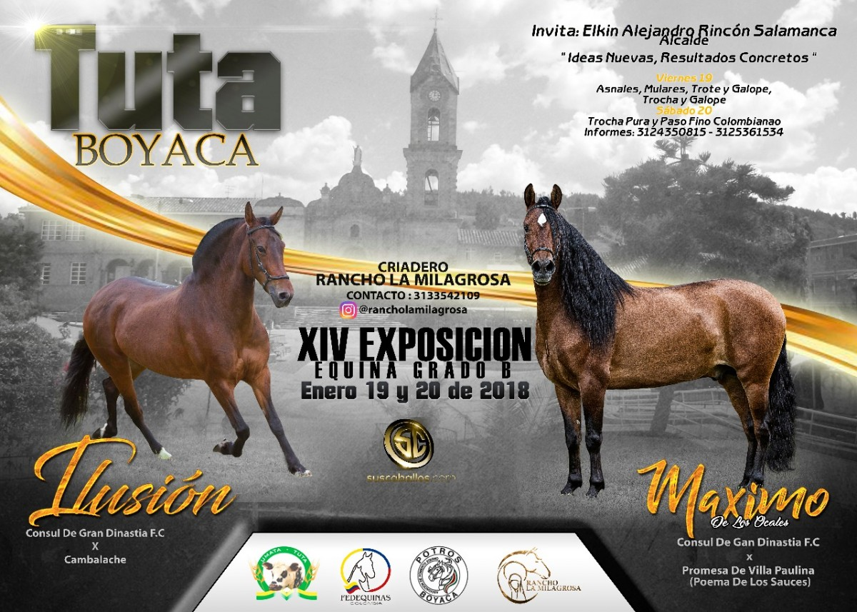 TRANSMISIÓN XIV Exposición Equina Grado B Tuta - Boyacá, 19 y 20 de Enero