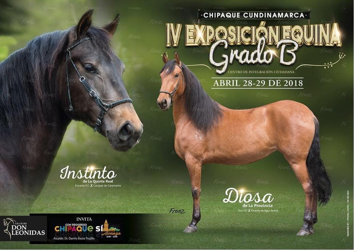 IV Exposición Equina Grado B Chipaque - Cundinamarca, 28 Y 29 de Abril