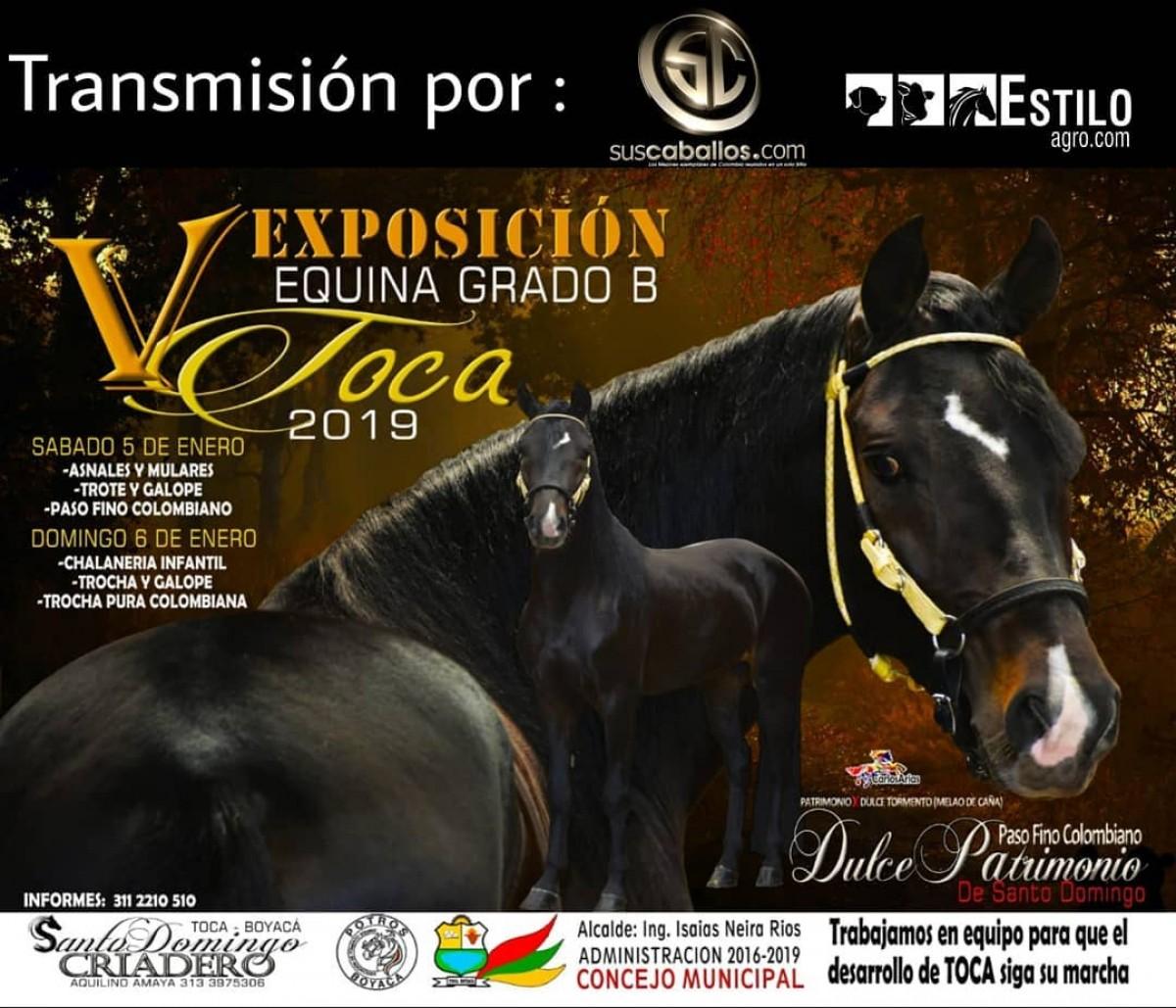 TRANSMISIÓN V Exposición Equina Grado B Toca, 5 y 6 de Enero 2019