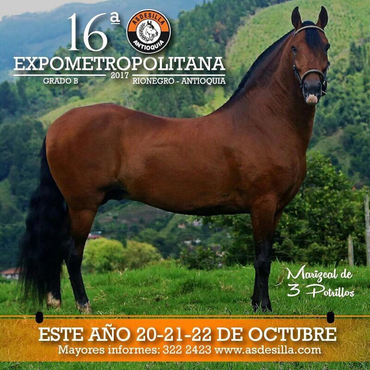 16a Expometropolitana Grado B, Asdesilla , Del 20 al 22 De Octubre