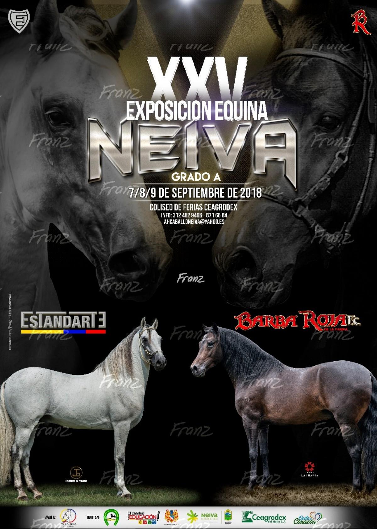 TRANSMISIÓN XXV Exposición Equina Neiva Grado A del 7 al 9 de Septiembre