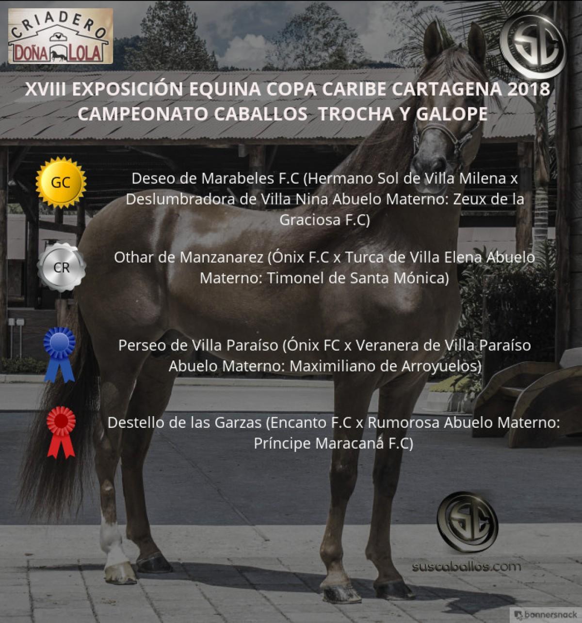 VÍDEO: Deseo Campeón, Othar Reservado, Trocha Y Galope, Copa Caribe Cartagena