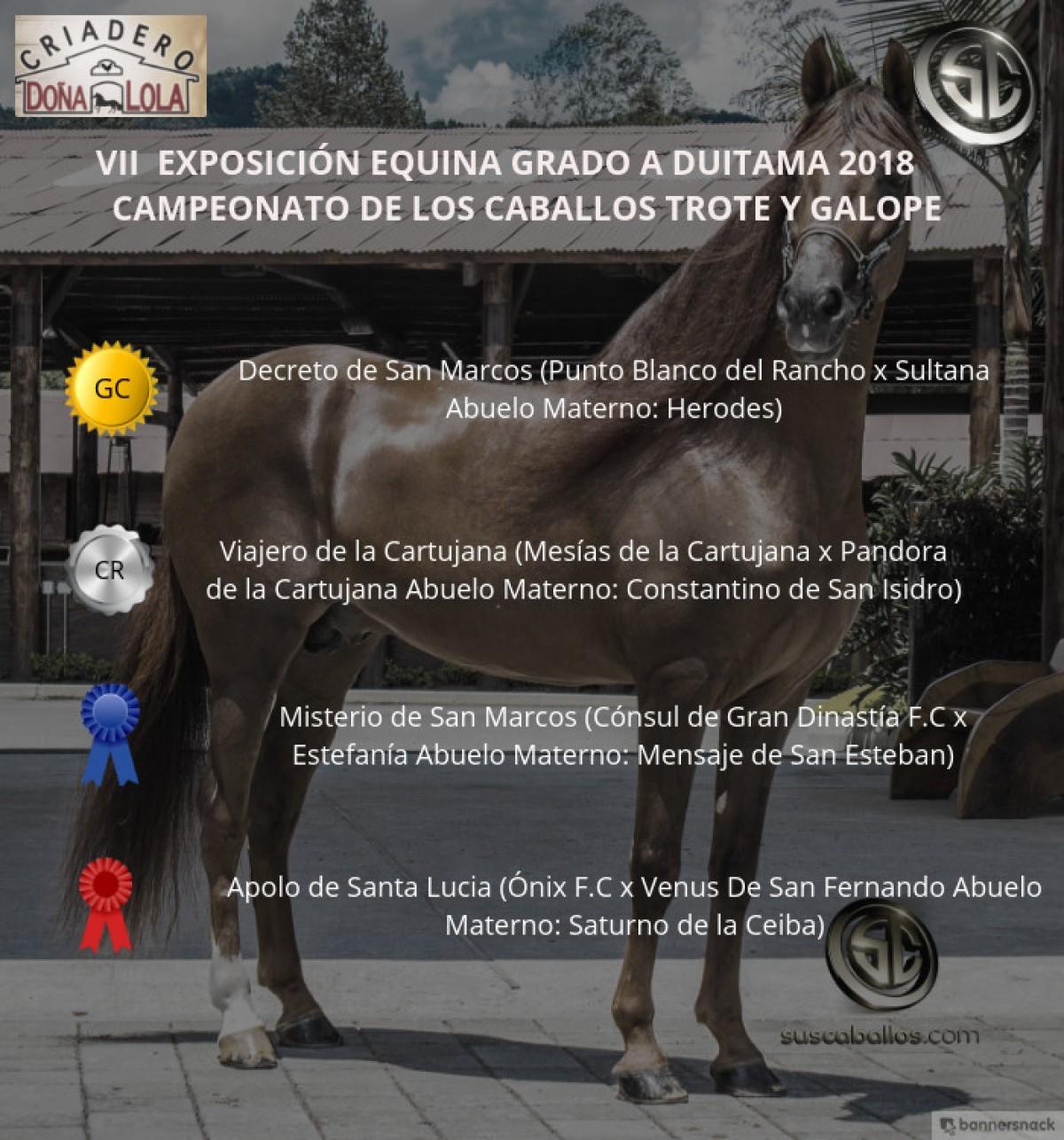 VÍDEO: Decreto Campeón, Viajero Reservado, Trote Y Galope, Duitama 2018