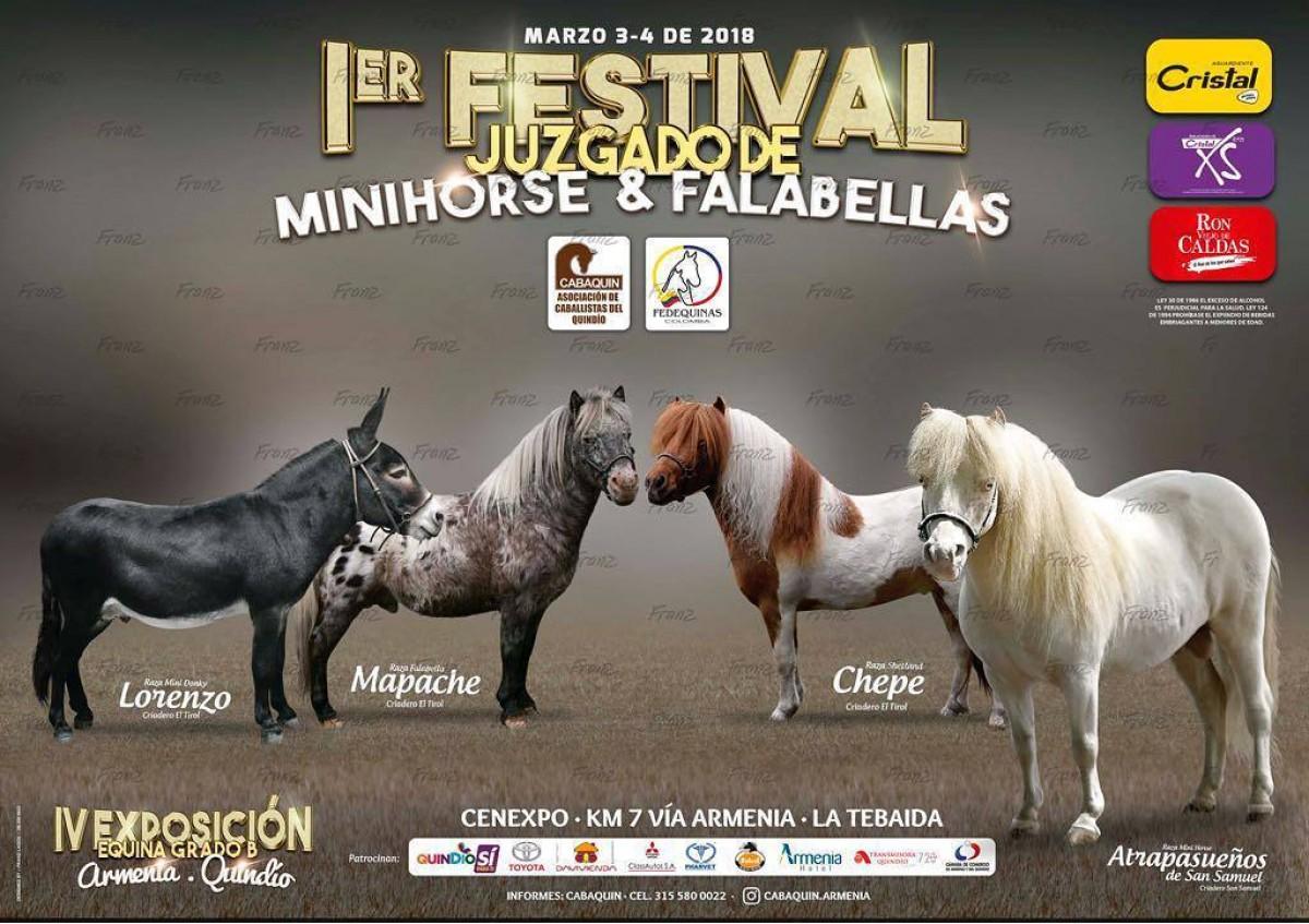 I Festival Juzgado de Minihorse Y Falabellas, 3 y 4 de Marzo - Armenia
