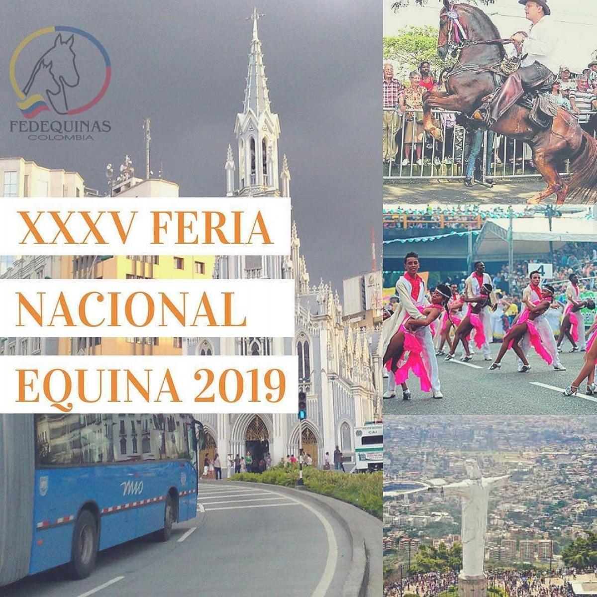 Cali Será La Sede De la XXXV Feria Nacional Equina 2019