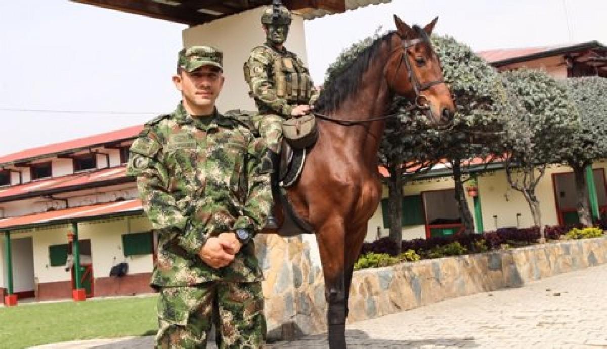 Así Funcionan Tres Criaderos Que Cuidan a Los Equinos Del Ejército