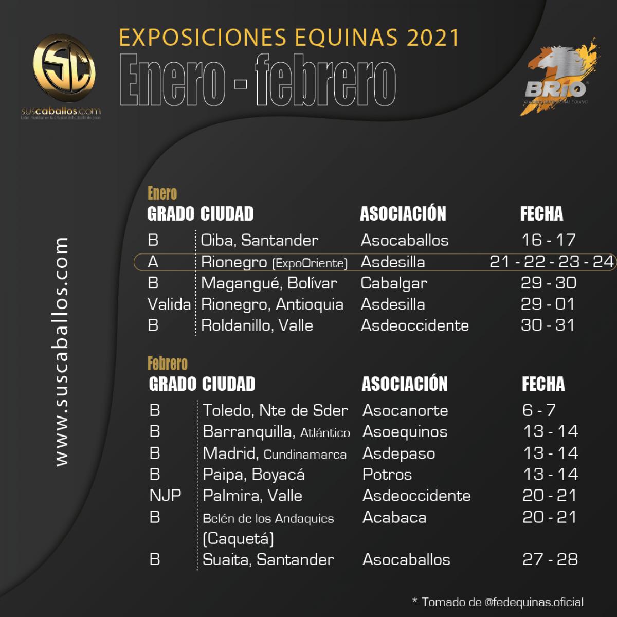 Exposiciones equinas enero y febrero de 2021