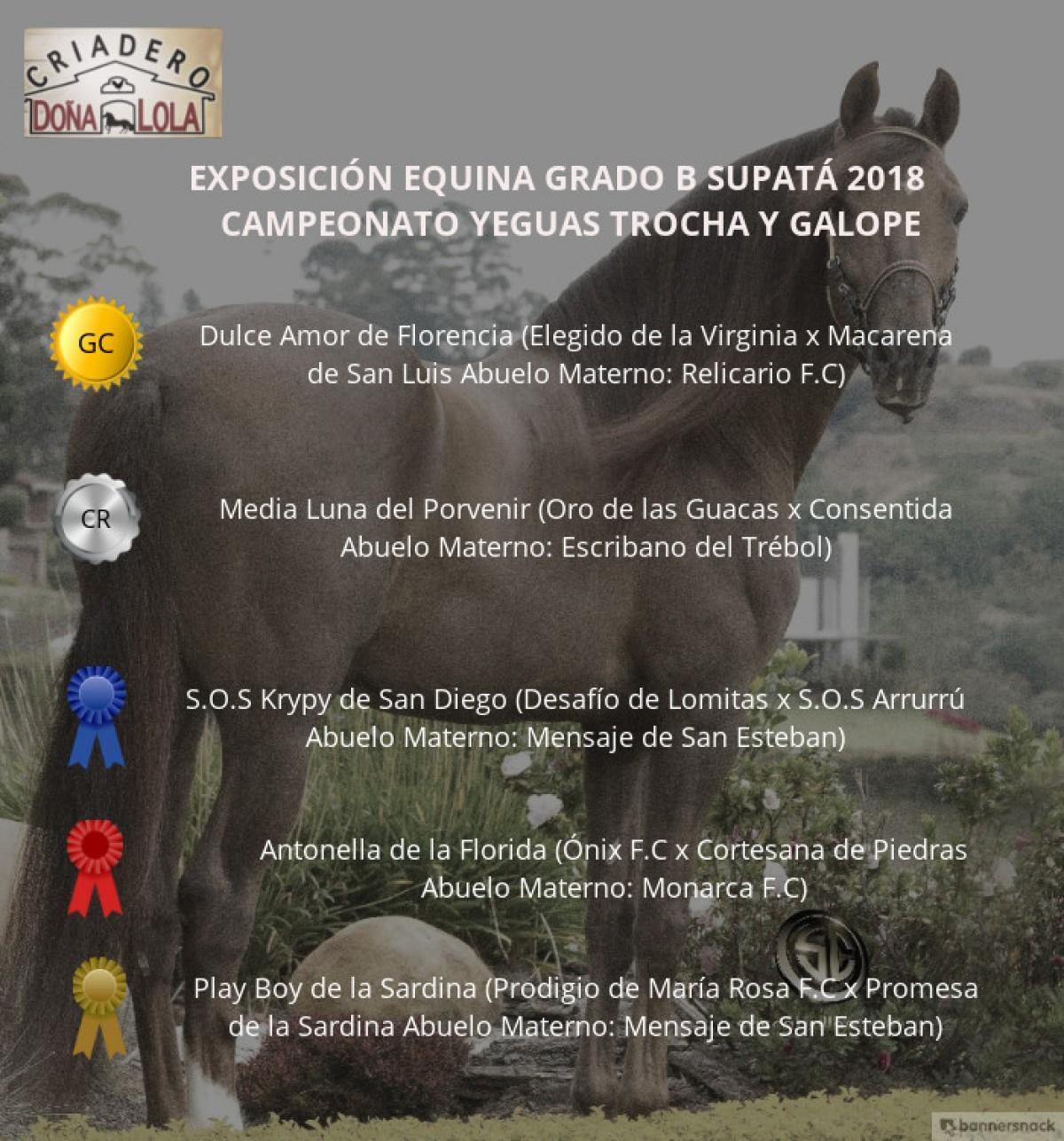 VÍDEO: Dulce Amor Campeona, Media Luna Reservada, Trocha Y Galope, Supatá 2018