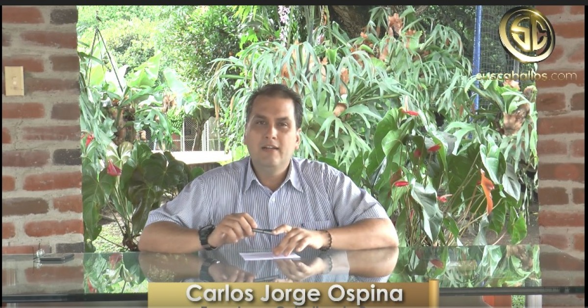 VÍDEO:Carlos Jorge Ospina Experto En Caballos Nos Habla Sobre Encanto