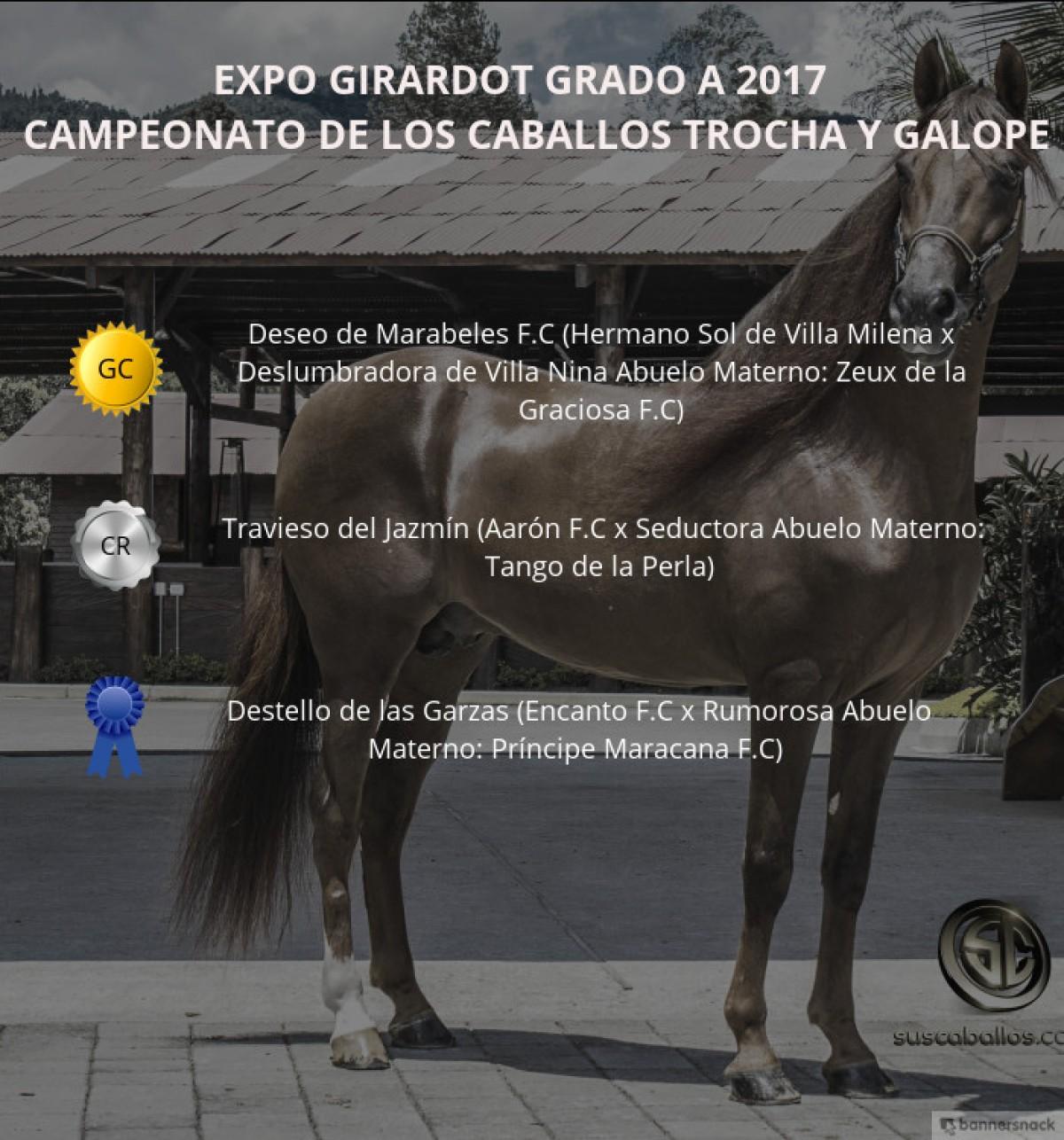 VÍDEO: Deseo Campeón, Travieso Reservado, Trocha Y Galope, Expo Girardot 2017