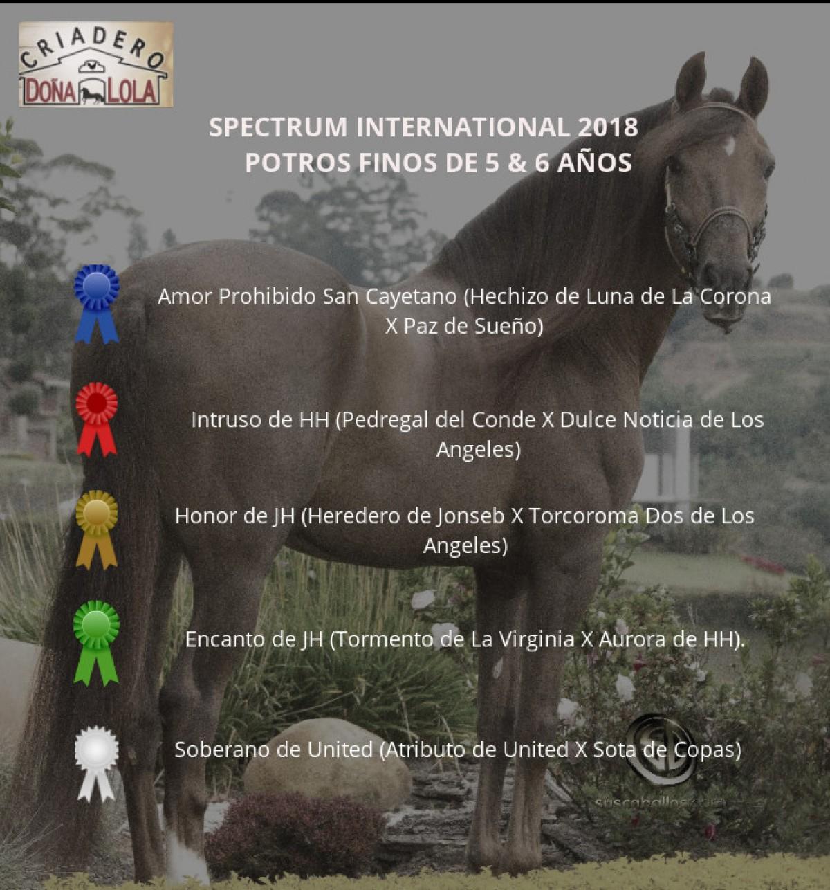 RESULTADOS  SPECTRUM INTERNATIONAL 2018 - DÍA SÁBADO