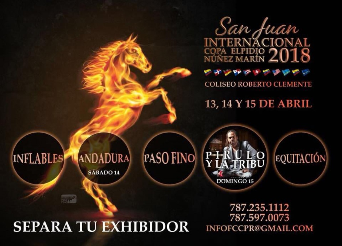 San Juan Internacional Copa Elpidio Núñez Marín, Del 13 al 15 de Abril