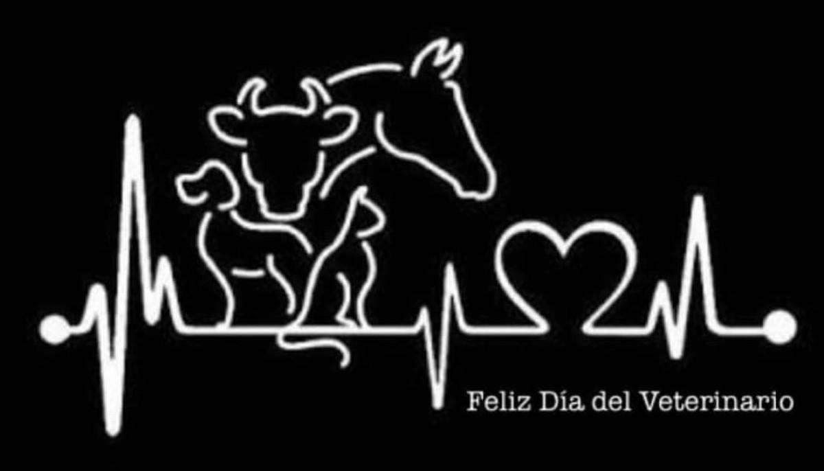 Feliz Día a Todos Los Veterinarios!!