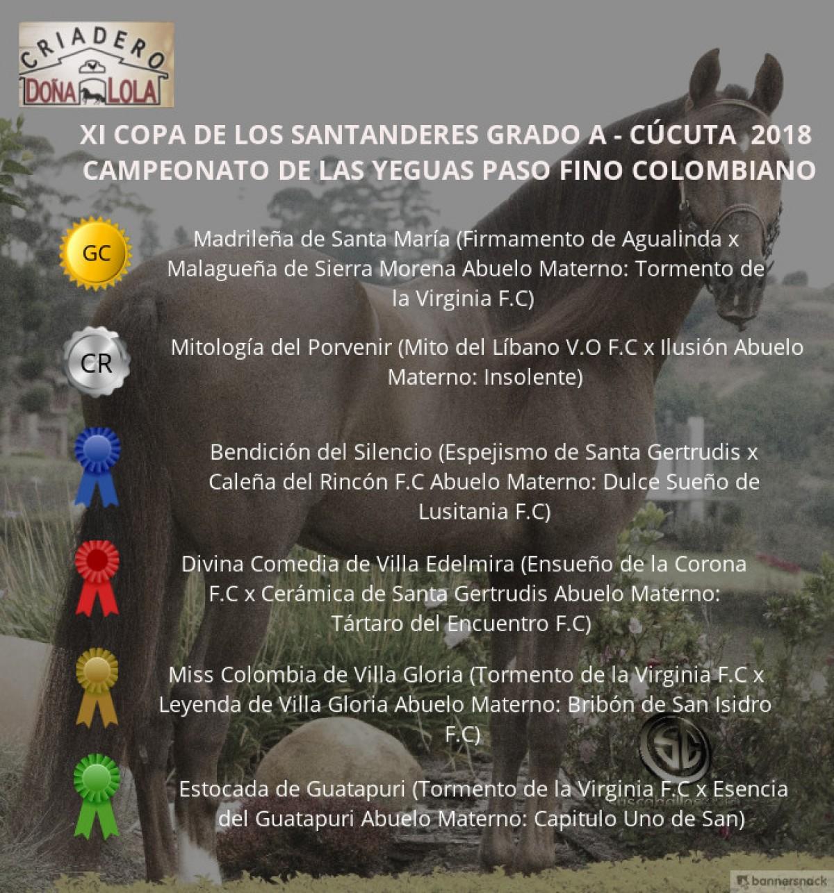 VÍDEO:Madrileña Campeona, Mitología Reservada, Paso Fino Colombiano, Cúcuta 2018