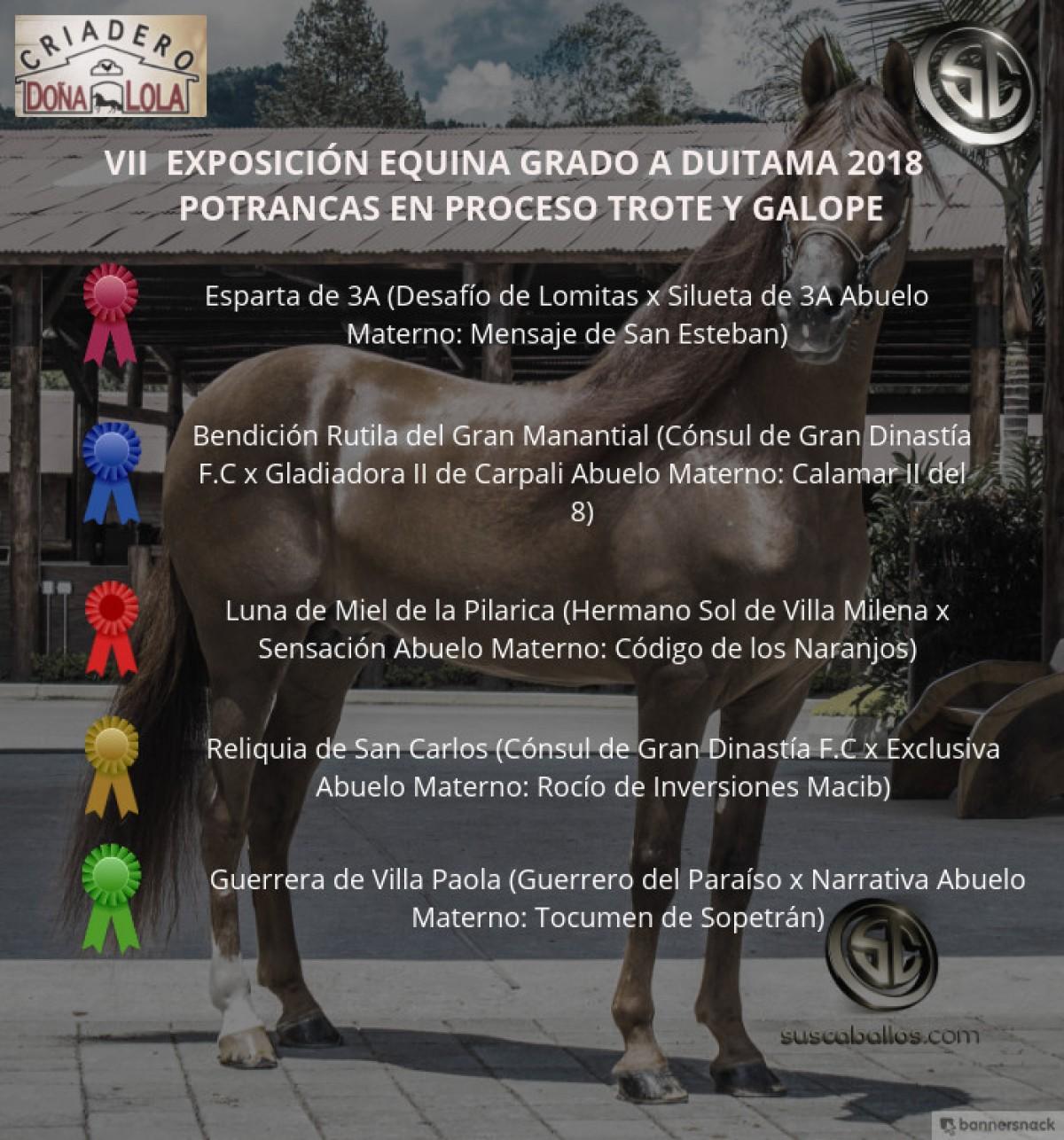 VÍDEO: Esparta Mejor, Bendición 1P, Trote Y Galope, Duitama 2018