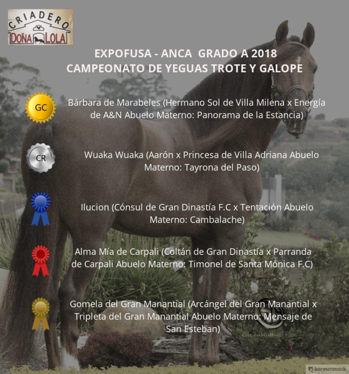 VÍDEO: Bárbara Campeona, Wuaka Wuaka Reservada, Expofusa Grado A 2018