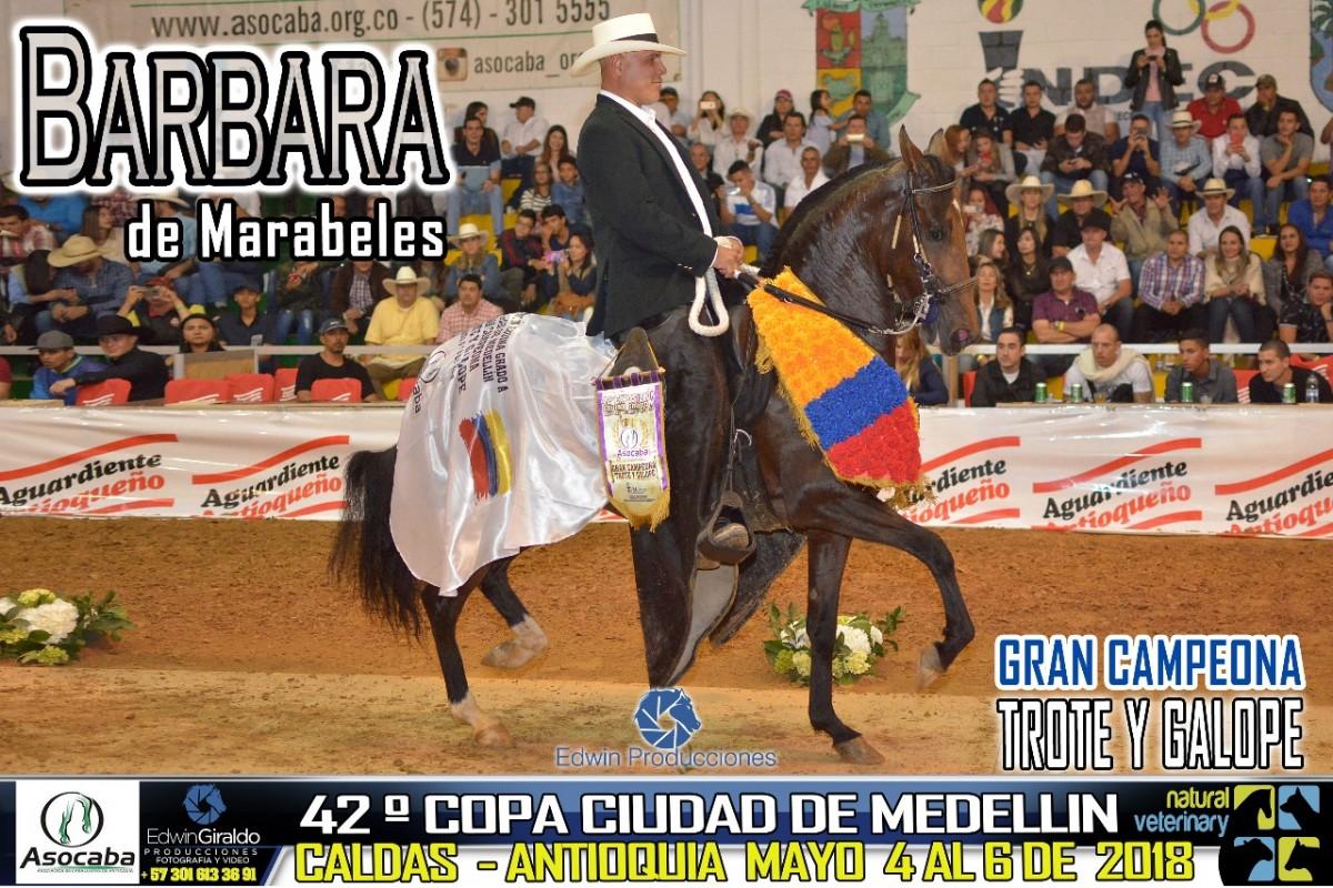 RESULTADOS 42 Copa Ciudad de Medellín Grado A, Asocaba - TROTE Y GALOPE