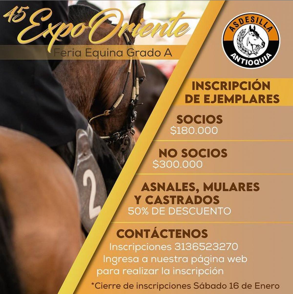 Inscribe tus ejemplares ExpoOriente 2020 - Asdesilla