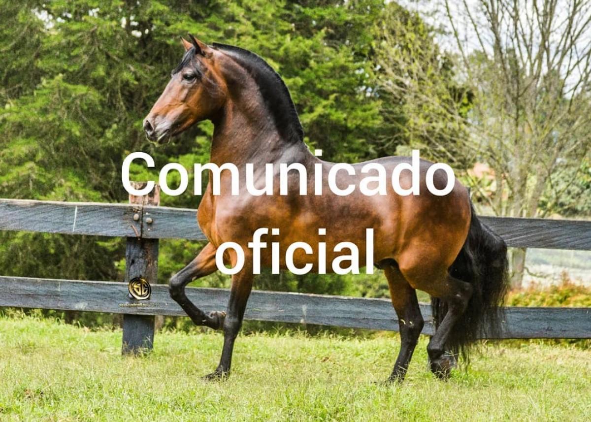 Comunicado Oficial Tentador Del Gran Chaparral