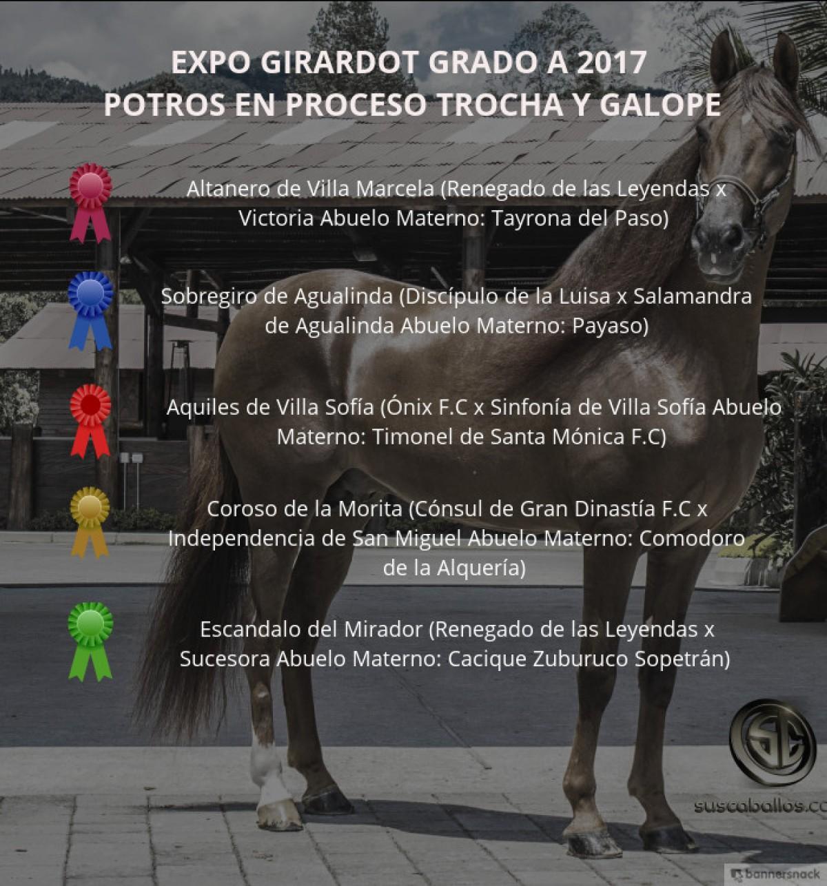 VÍDEO: Altanero Mejor, Sobregiro 1P, Potros Trocha Y Galope, Expo Girardot 2017