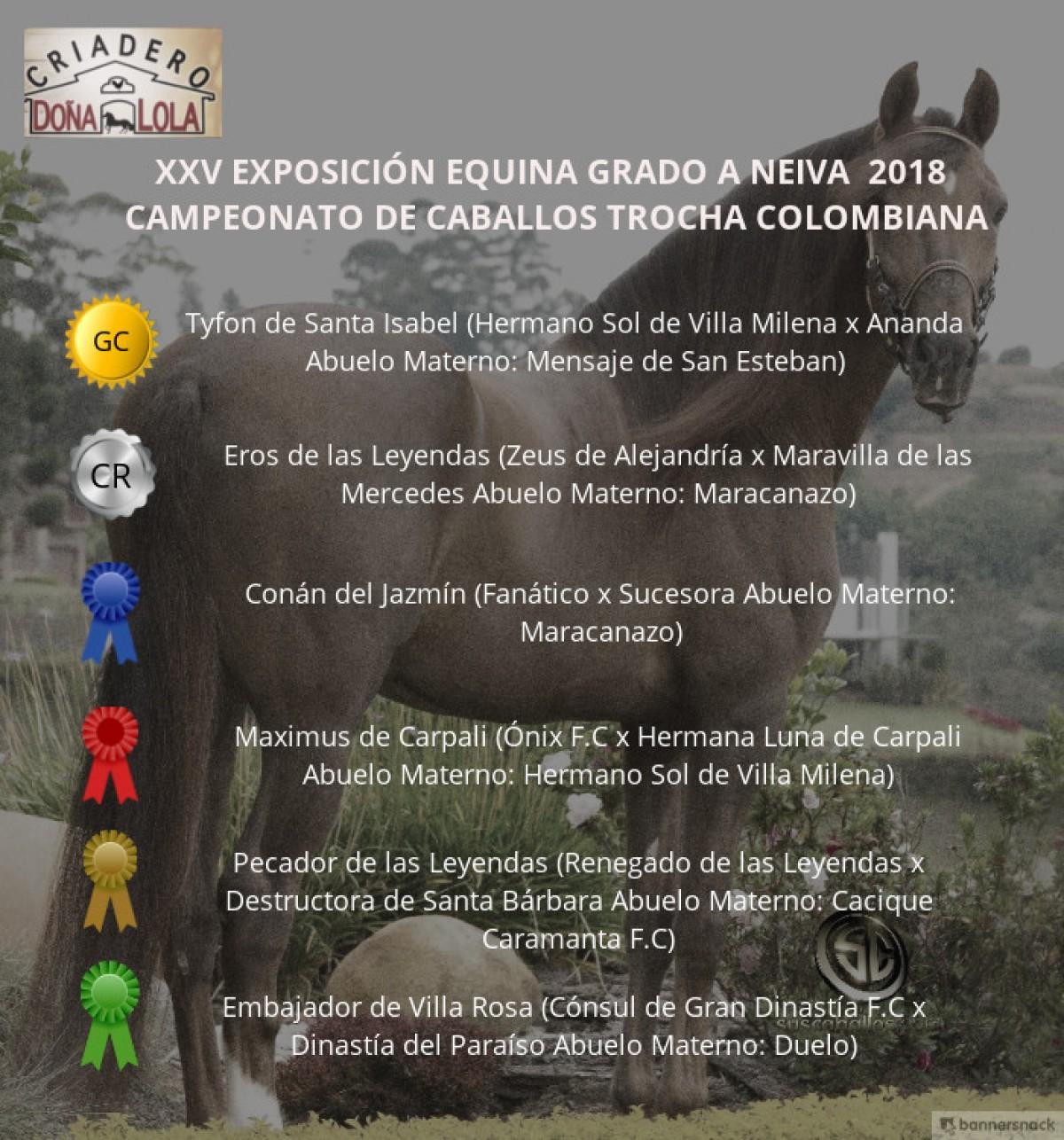 VÍDEO:Tyfon Campeón, Eros Reservado, Trocha Colombiana, Neiva 2018