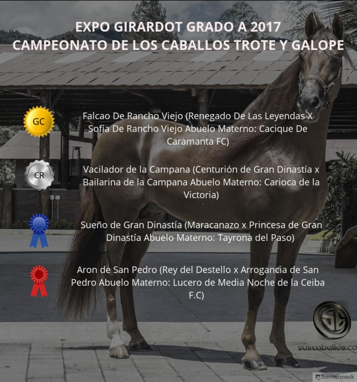 VÍDEO: Falcao Campeón, Vacilador Reservado, Trote Y Galope, Expo Girardot 2017