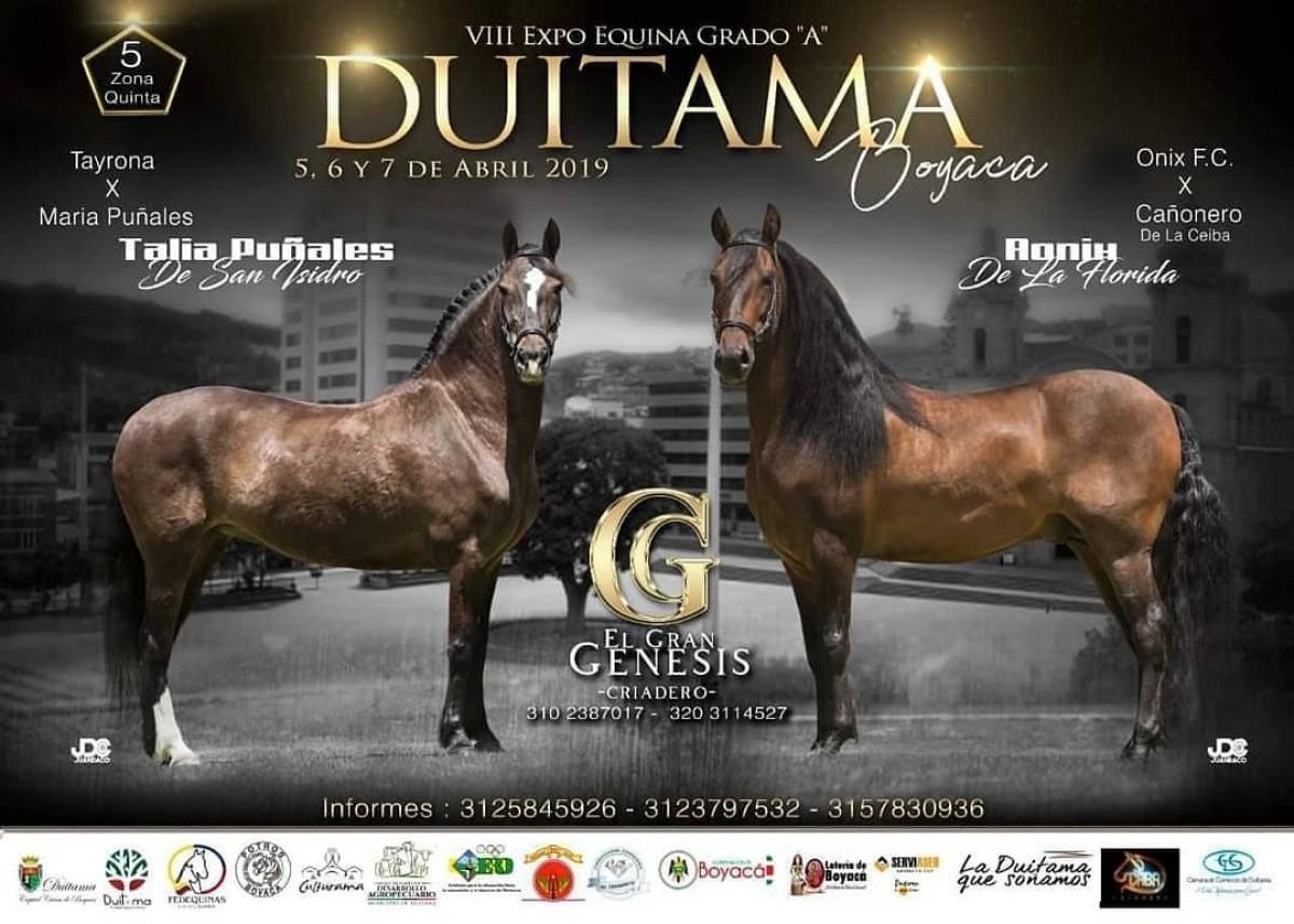 RESULTADOS VIII Exposición Equina Grado A Duitama 2019 - TROCHA Y GALOPE