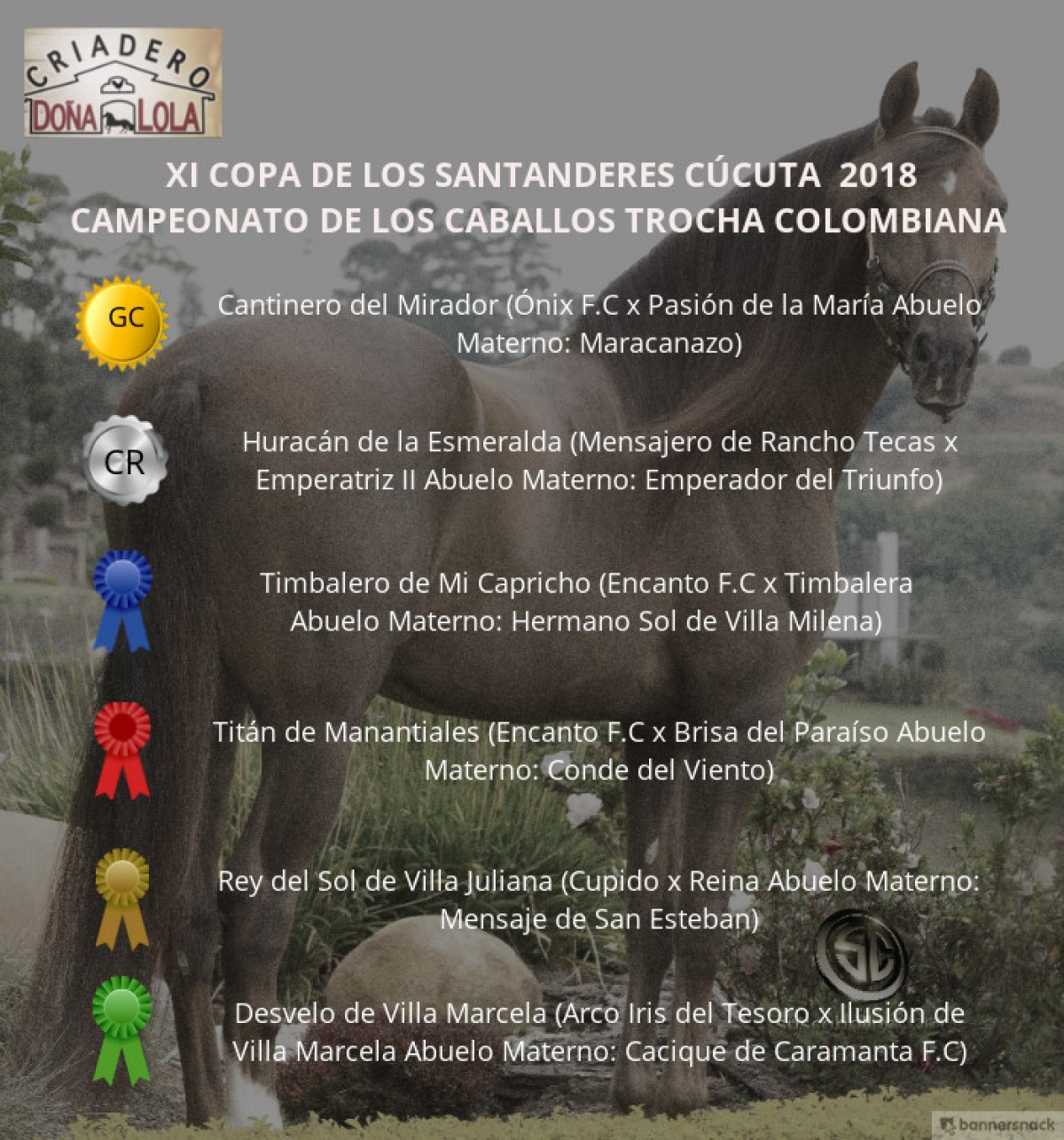 VÍDEO: Cantinero Campeón, Huracán Reservado, Trocha Colombiana - Cúcuta 2018