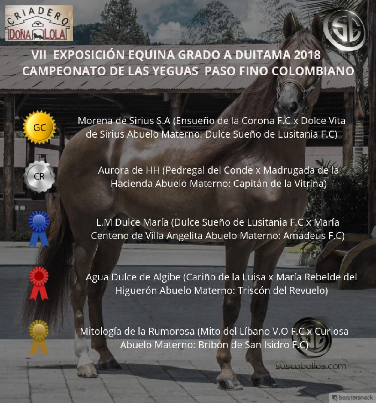 VÍDEO: Morena Campeona, Aurora Reservada, Paso Fino Colombiano, Duitama 2018