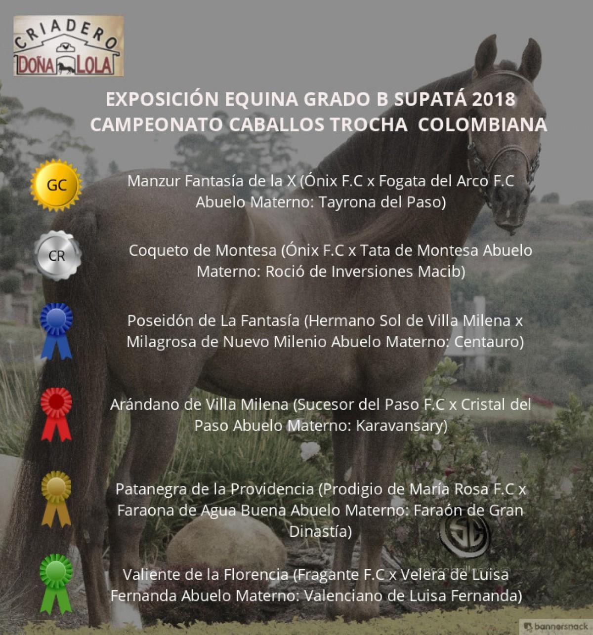 VÍDEO: Manzur Campeón, Coqueto Reservado, Supatá Grado B 2018