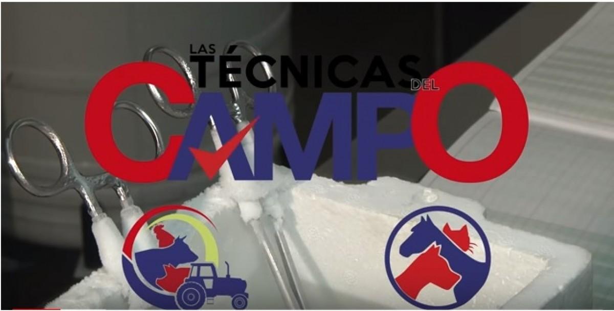 VÍDEO: Las Técnicas del Campo: Centro Reproducción Genética Parte #1
