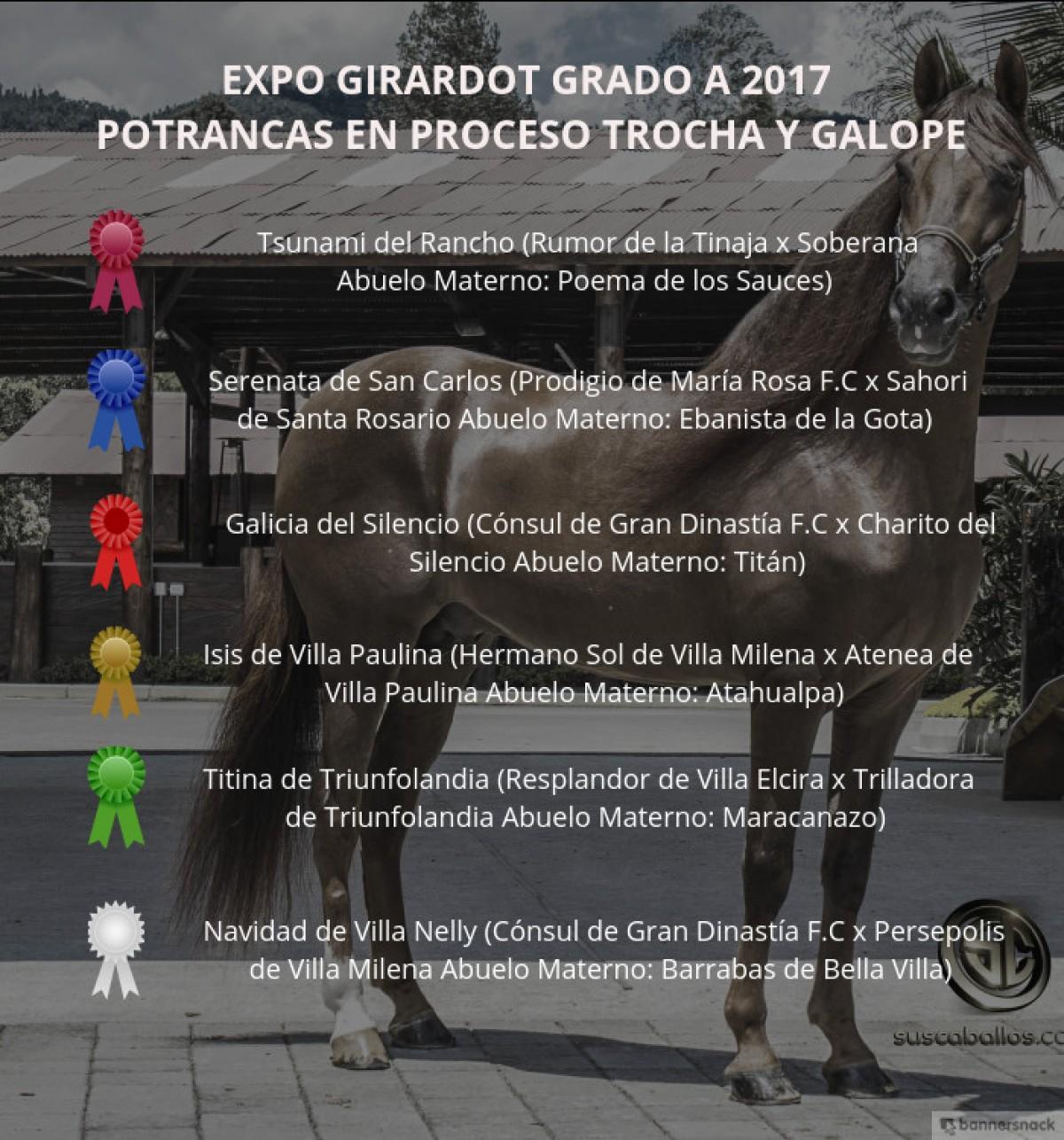 VÍDEO: Tsunami Mejor, Serenata 1P, Potrancas Trocha Y Galope, Expo Girardot 2017