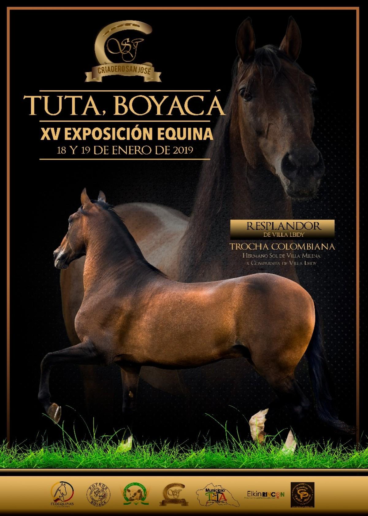 RESULTADOS XV Exposición Equina Tuta - Boyacá Grado B 2019 - TROCHA  Y GALOPE