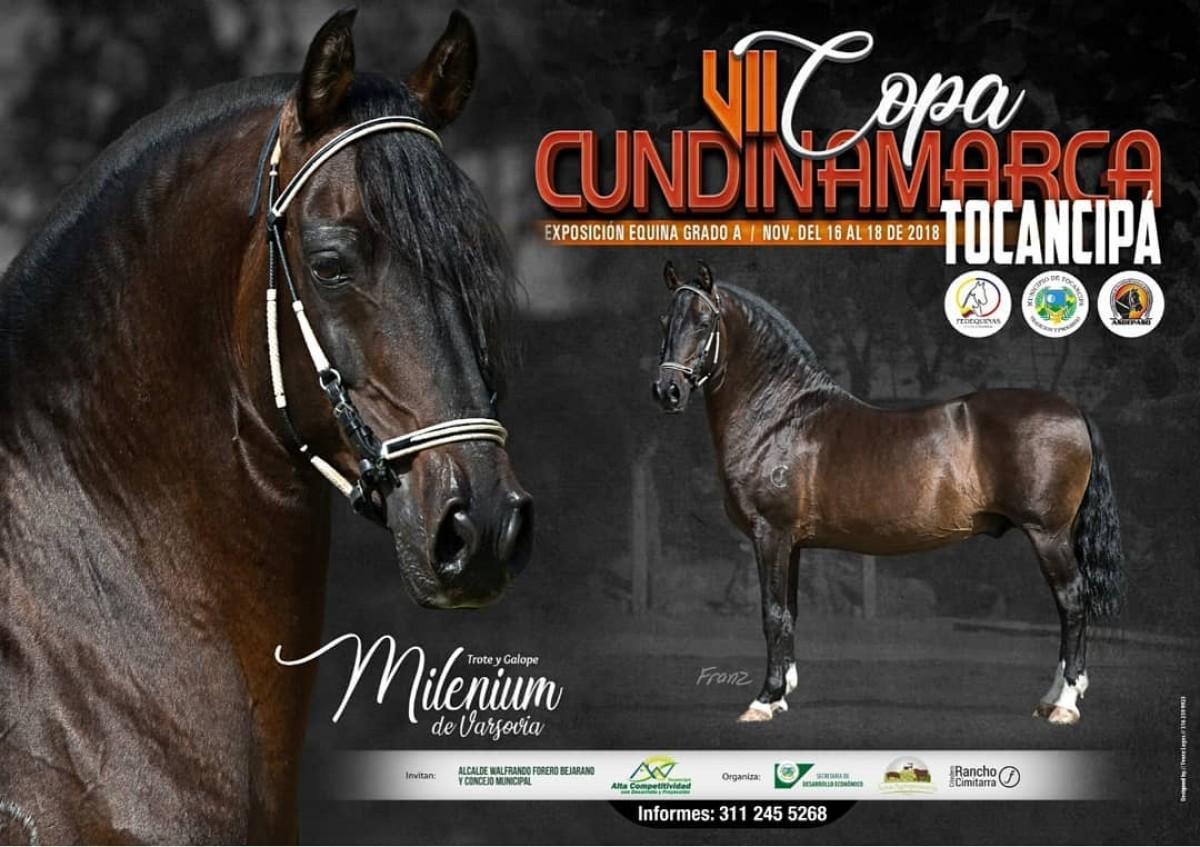 RESULTADOS VII Copa Cundinamarca Exposición Equina Grado A - TROCHA COLOMBIANA