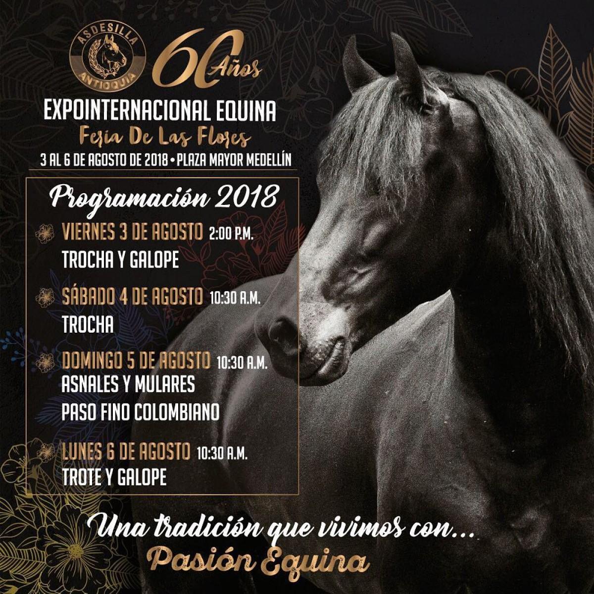 Prográmese Para La Expointernacional Equina Feria De Flores en sus 60 años
