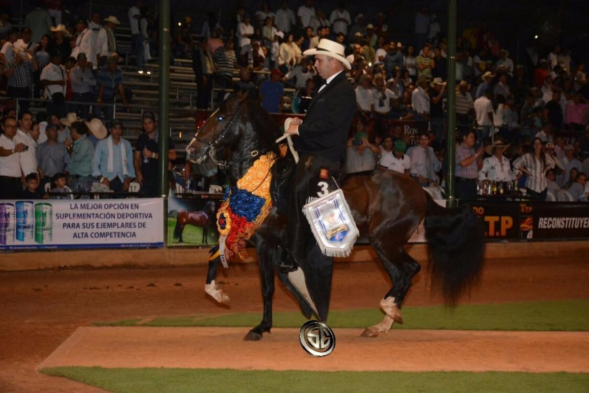 VÍDEO: Premier Campeón, Rey De Reyes Reservado, Trocha - XXV Copa América Equina