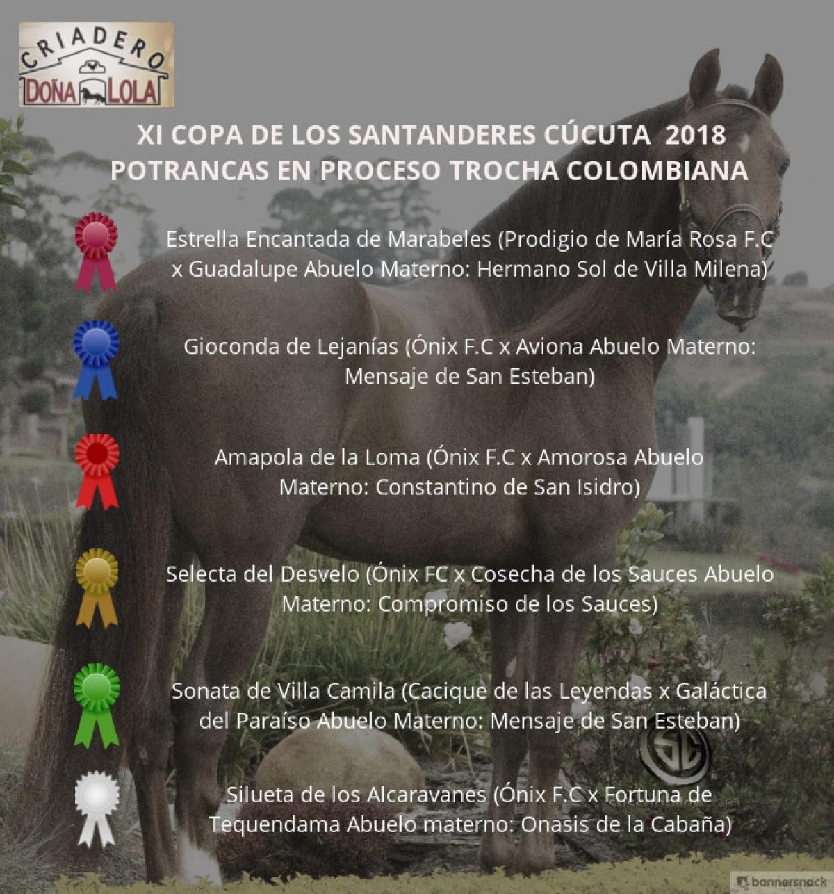 VÍDEO: Estrella Mejor, Gioconda 1P, Potranca Trocha Colombiana, Cúcuta 2018