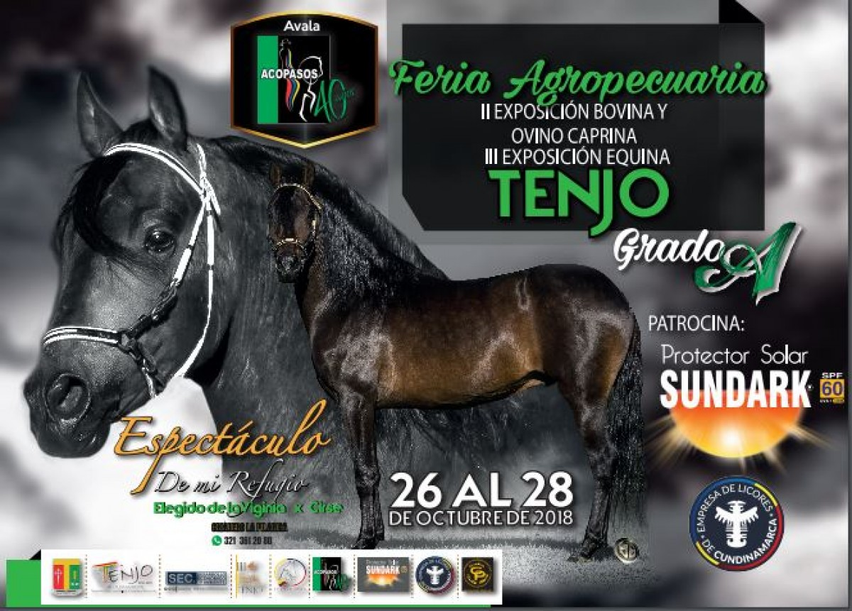 RESULTADOS III Exposición Equina Grado A Tenjo 2018 - PASO FINO COLOMBIANO