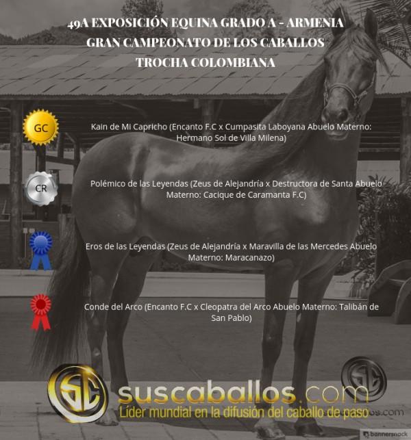 http://suscaballos.com/VÍDEO: Kain Campeón, Polémico Reservado, Trocha Colombiana - Armenia 2017