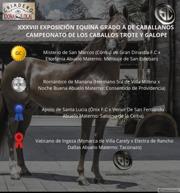 https://suscaballos.com/VÍDEO: Misterio Campeón, Romántico Reservado, Trote Y Galope, Caballanos 2018