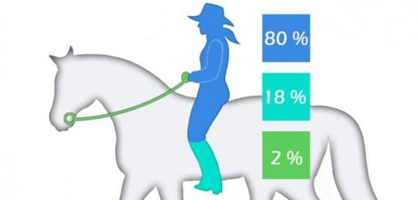 http://suscaballos.com/80-18-2: la relación ideal de las ayudas
