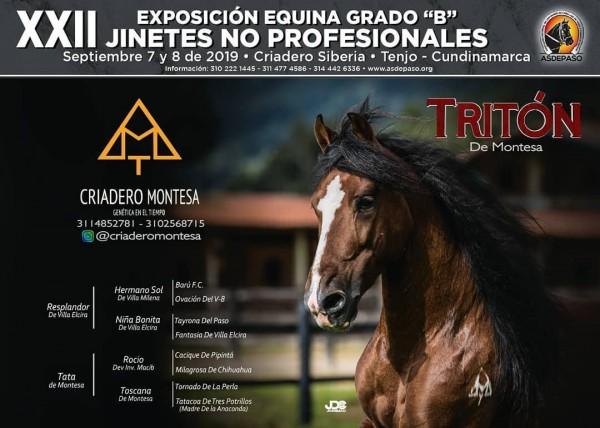 http://suscaballos.com/XXII Exposición Equina Grado B, Jinetes No Profesionales, 7 y 8 De Septiembre