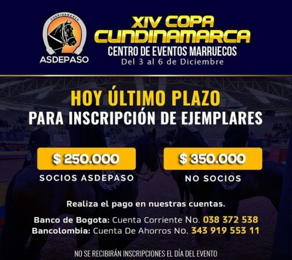http://www.suscaballos.com/HOY ÚLTIMO PLAZO PARA LA INSCRIPCIÓN DE EJEMPLARES.