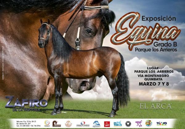http://suscaballos.com/Exposición Equina Grado B @parquelosarrieros Organiza: @cabaquinarmenia